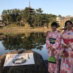 和+奈良 文化体验之旅