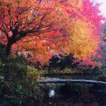 Beautiful autumn season