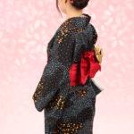 New kimono plan for only 2200 yen!
