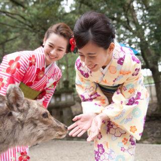 春♪さあ奈良公園にいきましょう