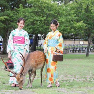 C'festa Nara Park