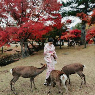 秋の奈良を目的に🍁🍠🍆🌰🍂🍁