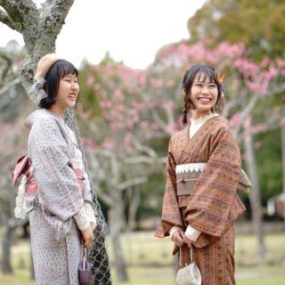 インスタ映えな 奈良公園