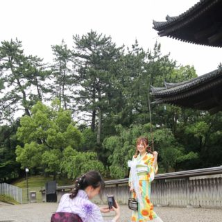 新緑の奈良🎵*゜*•.¸¸🎶